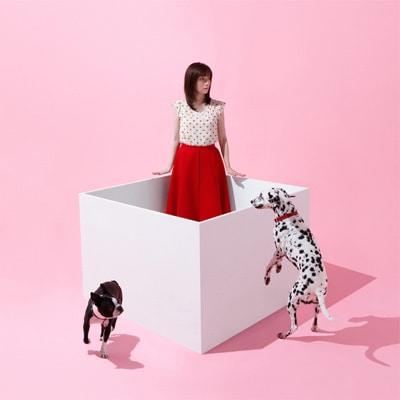 柴田淳「おはこ」初回限定盤