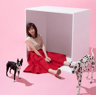 柴田淳「おはこ」通常盤