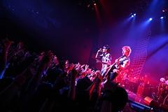 スガシカオ「SUGA SHIKAO LIVE TOUR 2015 『THE LAST』」12月25日の東京・Zepp DiverCity TOKYO公演の様子。