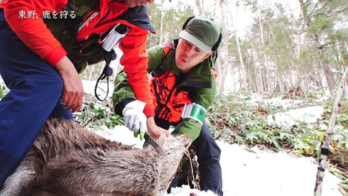 「東野、鹿を狩る」より。