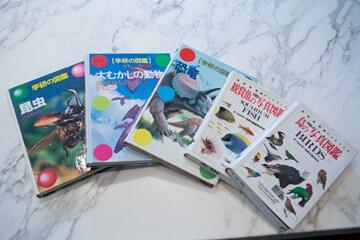 大田翔のお気に入りの動物の図鑑。